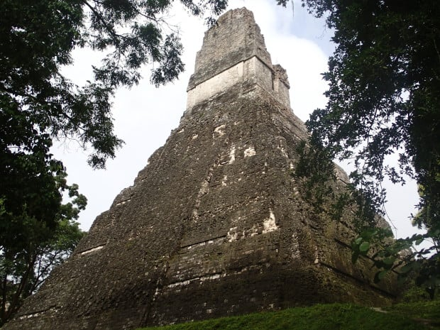 Tikal Temple I, as seen through the trees.