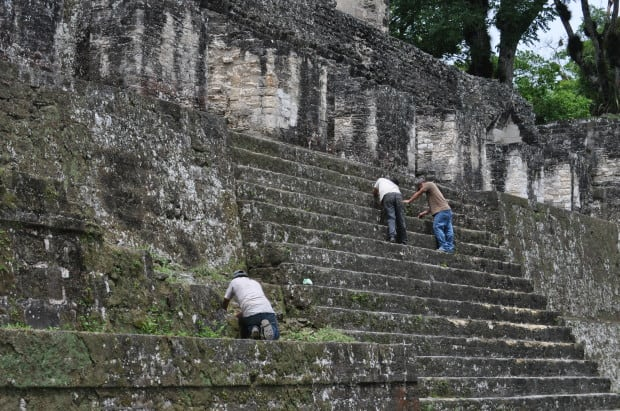 The real work of uncovering Tikal continues everyday. While archaeologists continue to dig, men comb the structures daily, pulling off growth and weeds to keep what has already been uncovered, visible.